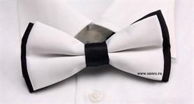 Бабочка для официанта - фото 4056