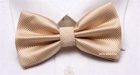 Бабочка для официанта - фото 4083