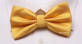 Бабочка для официанта - фото 4085